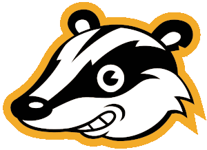 Privacy Badger logo representing internet privacy access third party tools.
